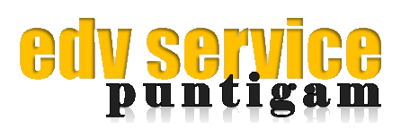 EDV-Service Puntigam